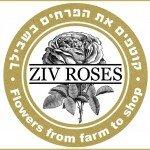 זיו רוזס פרחים