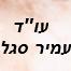 """עו""""ד עמיר סדל"""